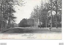 Tournai-La Drève De Maire - Tournai