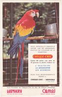 Buvard Perroquet (Ara) / Chèque Chic / PATES LUSTUCRU / Chocolat Cémoi - Animals