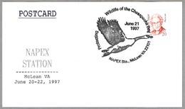 PROTECTING WILDLIFE OF THE CHESAPEAKE BAY. McLean VA 1997 - Protección Del Medio Ambiente Y Del Clima