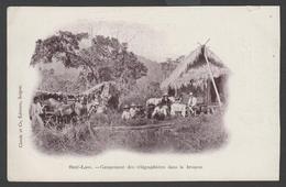 049 CARTE POSTALE INDOCHINE - LAOS - Campement Des Télégraphistes Dans La Brousse - Laos