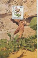 Saint Marin Carte Maximum 1972 Oiseaux Traquet 817 - Lettres & Documents