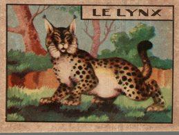 CHROMO  LE LINX - Trade Cards