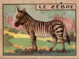 CHROMO  LE ZEBRE - Trade Cards