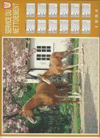 CALENDRIER  SERVICE DU NETTOIEMENT  DES EBOUEURS    ANNEE 1994  CHEVAL  ****   A  SAISIR  *** - Grand Format : 1991-00