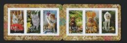 F21 Polynésie 2019 Carnet Adhésifs  Chats 2019  / Polynesia Adh. Cats - Carnets