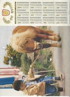 CALENDRIER  SERVICE DU NETTOIEMENT  DES EBOUEURS    ANNEE 1999  CHEVAL PONEY   ****   A  SAISIR  *** - Calendarios