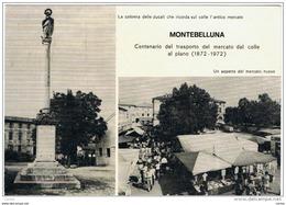 MONTEBELLUNA (TV):  CENTENARIO  DEL  TRASPORTO  DEL  MERCATO  DAL  COLLE  AL  PIANO  -  FOTO  -  FG - Inaugurazioni