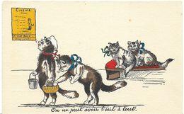 """CHAT CHATS HUMOUR CINEMA """" ON NE PEUT PAS AVOIR L'OEIL A TOUT """" CHAT VOLEUR - Cats"""