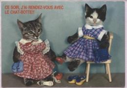 CPM - CHATS Habillés - Fantaisie - Katzen