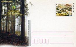 POLAND 2003 POSTCARD With SALAMANDER.BARGAIN.!! - Andere