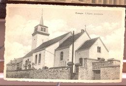 Cpsm Remagne   1954 - Libramont-Chevigny