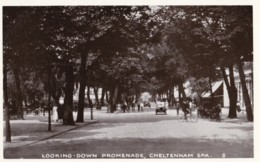 AQ27 Looking Down Promenade, Cheltenham Spa - RPPC, Vintage Cars, Cyclists - Cheltenham
