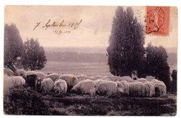 Tarjeta Postal Circulada De 1905 Matasellos Pontanlier - Francia