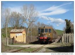 02 FS Treno ALn 556.2331 Breda Trequanda Siena Tpaívo Raliroad Train Railways  Treni Steam - Treni