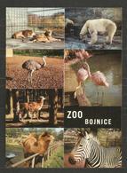 FAUNA - ZOO BOJNICE - SLOVAKIA  -   INTERESTING POST CARD - D 3946 - Slovaquie