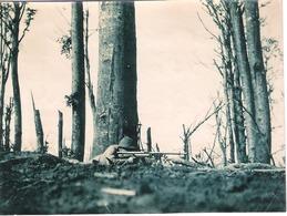 Photographie 10.2 X 7.2 Cm Fusil Mitrailleur Chauchat En Action  Haute Alsace 1917 144e RI - 1914-18