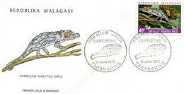 MADAGASCAR 1973 FDC With CHAMELEO.BARGAIN.!! - Other