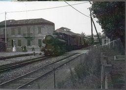 287 - Vapore 743.005 Alba Cuneo   Railroad Train Italian Railways Treni Locomotiva Ansaldo - Stazioni Con Treni