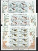 ABKHAZIA - 10 BLOCS **   OISEAUX / BIRDS - Fantasie Vignetten