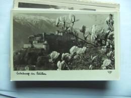Oostenrijk Österreich Salzburg Im Blüten - Salzburg Stadt