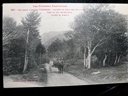 CARTE POSTALE _ CPA Vintage : AX Les THERMES _ Entrée Du Bois Des Gouttines  // CPA.L.FR240.27 - Ax Les Thermes