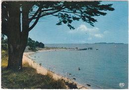 17. Gf. PORT-DES-BARQUES. Contre-jour Sur L'île Madame Et La Plage. 6 - Autres Communes