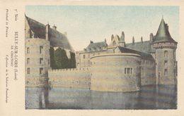 Cp , CARTES , SULLY-sur-LOIRE (Loiret), Le CHÂTEAU - Cartes