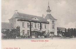 Chateau De Tercoest  , Het  Kasteel ( Hasselt, Alken) - Alken
