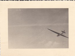 MINI-PHOTO----AVIATION---PLANEUR  En Vol--voir 2 Scans - Aviation