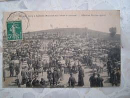 CPA LOZERE FOIRE AUMONT 48, MARCHE AUX BETES A CORNES AFFAIRES FACILES BETAIL 1917 - Aumont Aubrac