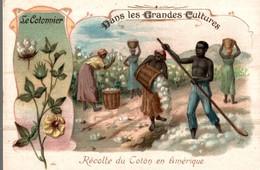 CHROMO BON POINT DRAGEES DE TABUROL MONAL  DANS LES GRANDES CULTURES  LE COTONNIER - Autres