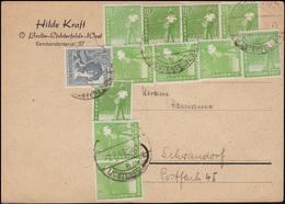 946 Sämann 11x10 Pf (Farben!) + ZF Zehnfachfrankatur Postkarte BERLIN 2.7.48 - Gemeinschaftsausgaben