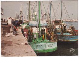 Arcachon - Le Port De Peche  - (33) - Arcachon