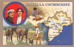 Publicité Des Produits Du Lion Noir - Les Colonies Françaises - La COCHINCHINE - Attelage De Boeufs Labour Dans Rizière - Postcards