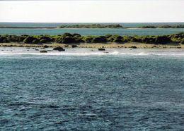 2 AK Pitcairn - Ducie Island * Ansichten Der Zu Pitcairn Gehörenden Insel Ducie * - Pitcairn Islands