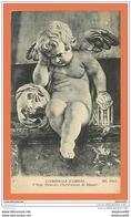 A569 / 683 80 - AMIENS Cathédrale Ange Pleureur - Frankreich