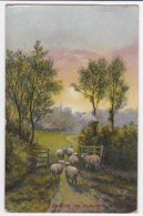 AK90 Animals - Entering The Pasture - Sheep - Animals