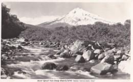 AQ28 Mount Egmont From Stoney River, N.Z. - RPPC, Plain Back - New Zealand