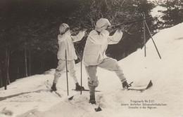 Unsere Deutschen Schneeschuhbataillons. Vorposten In Den Vogesen - Marcophilie (Lettres)