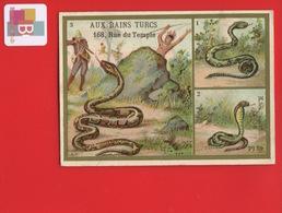 Paris BAINS TURCS SCHULLE Rue Temple Chromo Dorée Laas Serpent Egypte Reptiles Aspic Boa - Chromos