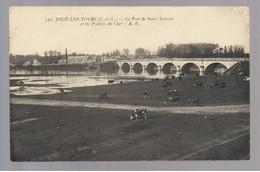37 Joué Les Tours Le Pont De Saint Sauveur Et Les Prairies Du Cher CPA - Frankreich