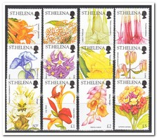 St. Helena 2003, Postfris MNH, Flowers - Sint-Helena
