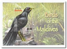 Maldiven 2010, Postfris MNH, Birds - Maldiven (1965-...)