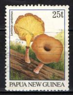 PAPUA NUOVA GUINEA - 1995 - Lentinus Umbrinus - USATO - Papua Nuova Guinea