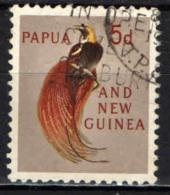PAPUA NUOVA GUINEA - 1961 - UCCELLO DEL PARADISO - USATO - Papua Nuova Guinea