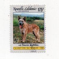 Env 1 : Nouvelle Caledonie Stamp Timbre Oblitéré Le Bouvier Australien - New Caledonia