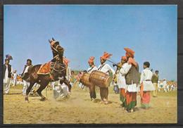 PAKISTAN POSTCARD HORSE DANCING LAHORE - Pakistan