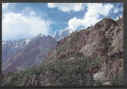 PAKISTAN POSTCARD BUBLIMOTING LADY FINGER MOUNTAIN HUNZA - Pakistan