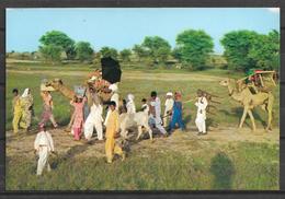 PAKISTAN POSTCARD TRAVELLING CARAVAN GYPSIES IN PUNJAB - Pakistan