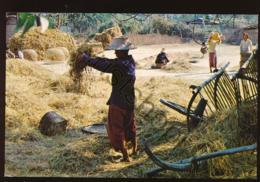 Thailand - Thai Farmers [AA43-0.174 - Tailandia